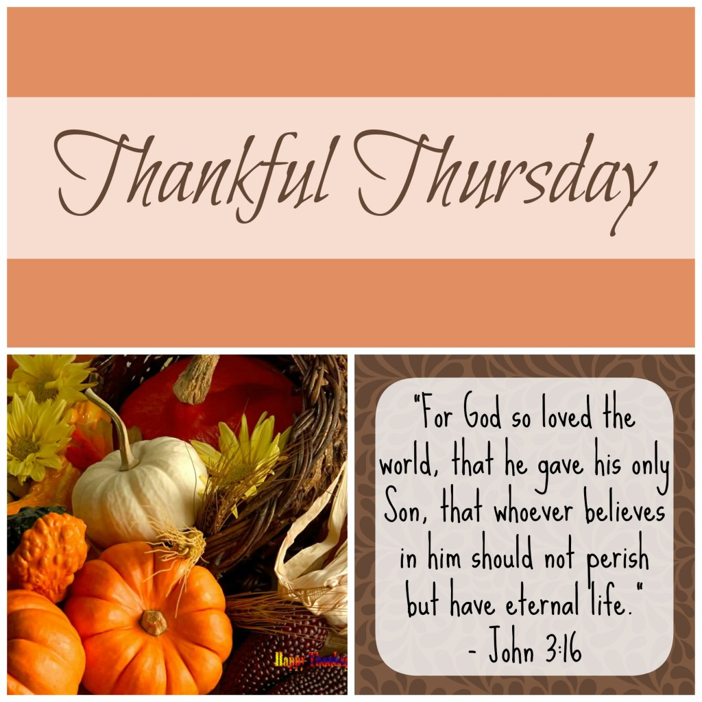 Thankful Thursday 4