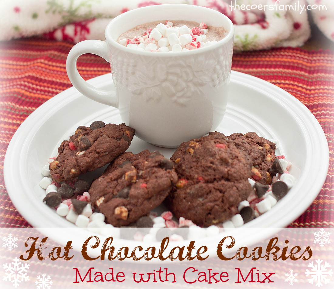 Can I Use Hot Cocoa Mix For Cake
