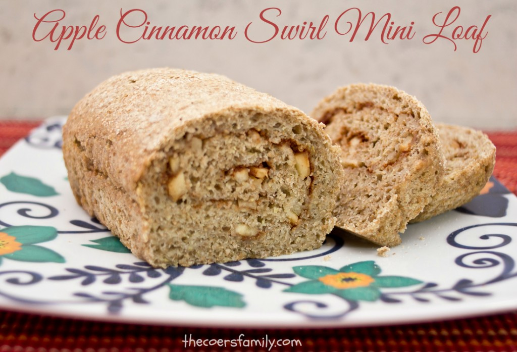 Trim Healthy Mama Apple Cinnamon Bread (E)