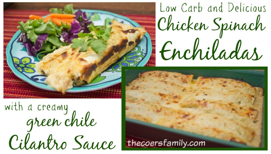 Low Carb Chicken Spinach Enchiladas from thecoersfamily.com